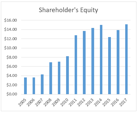 Graph of shareholder's equity